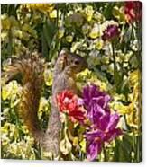 Squirrel In The Botanic Garden-dallas Arboretum V5 Canvas Print