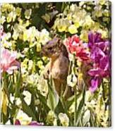 Squirrel In The Botanic Garden-dallas Arboretum V6 Canvas Print