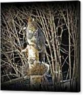 Squirrel On Birch Post Canvas Print
