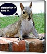 Squirrely Push Ups Canvas Print