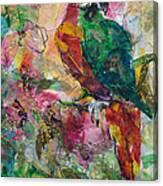 Sr. Pappagallo Canvas Print