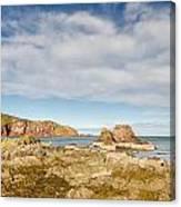 St Abbs Rocky Shoreline Canvas Print