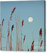 St. Augustine Beach Moonrise Canvas Print