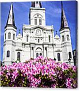 St. Louis Cathedral And Flowers In New Orleans Canvas Print
