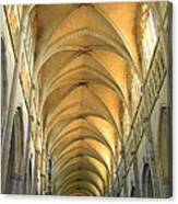 St. Maurice Cathedral In Vienne Canvas Print