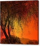 Stained By The Sunset Canvas Print