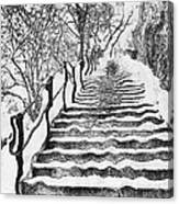 Stairs In Winter Canvas Print