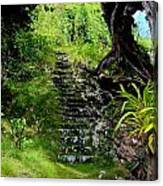 Stairway Through The Forest Canvas Print