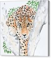 Stalker In The Trees Canvas Print