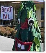 Stanford Tree Mascot Beat Cal Canvas Print