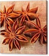 Star Anise Canvas Print