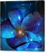 Star Light Plumeria Canvas Print