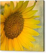 Star Of The Show Canvas Print