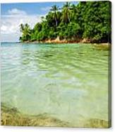 Starfish And Clear Water Canvas Print