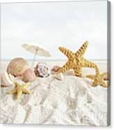 Starfish And Seashells  At The Beach Canvas Print