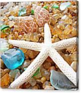 Starfish Art Prints Shells Agates Coastal Beach Canvas Print