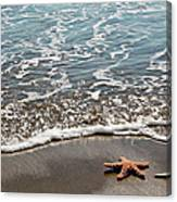 Starfish Catching The Waves Canvas Print