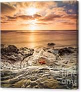Starfish Sunset Canvas Print