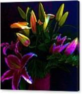 Stargazer Bouquet Canvas Print