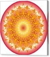 Starlace Canvas Print