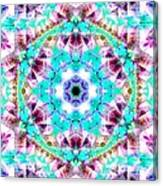 Starlight Window Canvas Print