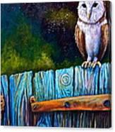 Starry Barn Owl Canvas Print