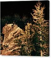 Starry Night In The Blue Ridge Canvas Print