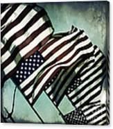 Stars N  Stripes Canvas Print