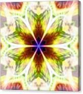 Starseed Rainbow Canvas Print