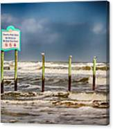 Stating The Obvious Canvas Print