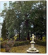 Statue And Tree Canvas Print