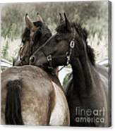 Staying Together Canvas Print