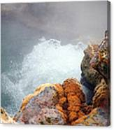 Steaming Hot Spring Canvas Print