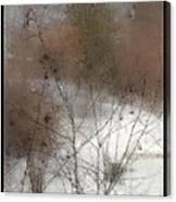 Steamy Window Canvas Print