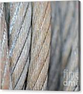 Steel Wire Canvas Print