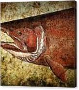 Steelhead Trout Canvas Print