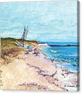 Steep Beach Canvas Print