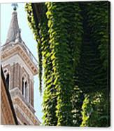 Steeple And Ivy Canvas Print