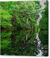 Steinhatchee River Canvas Print