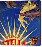 Stella Petrol Canvas Print