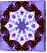 Stellar Spiral Eagle Nebula II Canvas Print