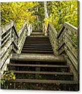 Step Trail In Woods 10 Canvas Print