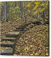 Step Trail In Woods 12 Canvas Print
