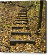 Step Trail In Woods 14 Canvas Print