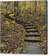 Step Trail In Woods 15 Canvas Print
