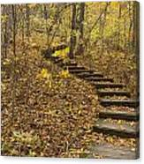 Step Trail In Woods 16 Canvas Print