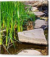Stepping Stones Across Creek On Lower Palm Canyon Trail In Indian Canyons Near Palm Springs-ca Canvas Print