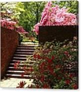 Steps To Azalea Fairyland Canvas Print