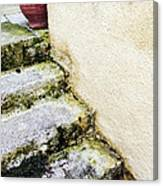 Steps Wall And Vase Canvas Print