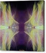 Stereoscopic Canvas Print